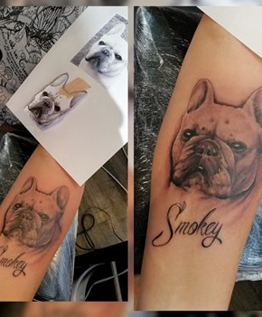 France bulldog tattoo, bulldog tattoo